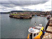D2818 : Carnlough Harbour by Mick Garratt