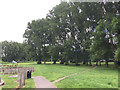 SP3682 : Open space with big poplars, Bell Green, north Coventry by Robin Stott