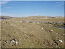 SD8965 : Great Close Scar from Malham Beck by Johnny Coop