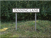 TM0890 : Tanning Lane sign by Adrian Cable