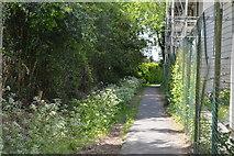 TQ3939 : Footpath by Queen Victoria Hospital by N Chadwick