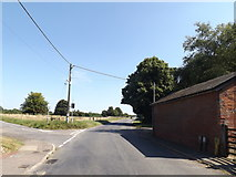 TM0890 : B1113 Norwich Road, New Buckenham by Adrian Cable