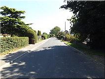 TM1193 : Bunwell Street, Bunwell by Adrian Cable