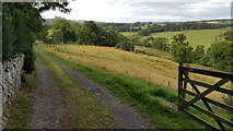 NZ0559 : Footpath between New Ridley and Hindley by Clive Nicholson