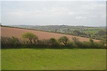 SW7545 : Field near Jolly's Bottom by N Chadwick