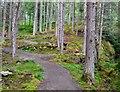 NH3811 : New path by the Allt na Criche by Jim Barton
