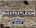 SX7466 : Sunlight at Buckfastleigh by Des Blenkinsopp