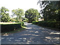 TM1485 : Rectory Road, Gissing by Adrian Cable