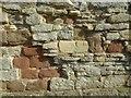 SO8832 : Masonry in a wall of Abbey Barn by Philip Halling