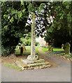 SP8864 : Churchyard Cross, The Church of St Nicholas by David Dixon