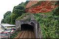 SX9676 : The railway tunnel, Dawlish by Alan Hunt