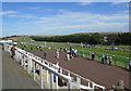 TQ3305 : Brighton Racecourse by Paul Gillett