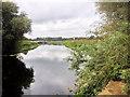 SP9167 : River Nene near to Irchester by David Dixon