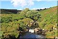 SX6764 : River Avon downstream of the dam by Des Blenkinsopp