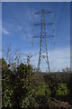 SX4563 : Pylon near Bere Ferrers by N Chadwick