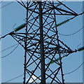SJ5687 : Birds among the pylons, Penketh by Matt Harrop