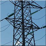 SJ5687 : Birds among the pylons, Penketh by Matt Harrop