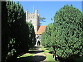 SU7886 : Path to the church Hambleden by Peter S