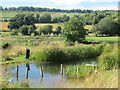 SU7887 : Pond off the Chiltern Way near to Pheasant's Hill by Peter S