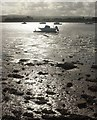 SX9687 : Boats, Exe estuary by Derek Harper