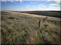 SE0012 : Fence, Haigh Gutter by Mick Garratt