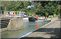 TQ2076 : Mooring Basin near Chiswick Bridge by Des Blenkinsopp