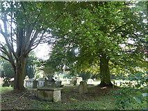 SP0202 : Churchyard of St. John Baptist Church, Cirencester by pam fray