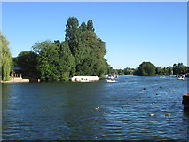 SU7682 : River Thames at Henley-on-Thames by Peter S