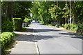 TQ3437 : Sandy Lane by N Chadwick