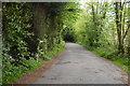 TQ3337 : Road to Huntsland House by N Chadwick