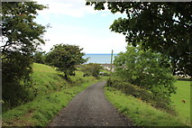 NX1896 : Hill Path approaching Girvan by Billy McCrorie