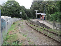 SX4368 : Calstock railway station, Cornwall by Nigel Thompson