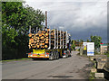 NY3759 : Timber lorry arriving at Kingmoor railway yard by Rose and Trev Clough