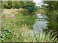 TQ2891 : Pond in Secret Park by Marathon