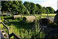 ST7573 : Pig houses at Folly Farm by Bill Boaden
