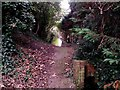 SZ1492 : Tuckton: footpath I18 from the riverbank by Chris Downer