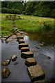 NZ0384 : Stepping stones over the River Wansbeck, Wallington by Christopher Hilton