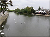 TL0549 : River Great Ouse, Bedford by Richard Rogerson