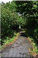 SP2705 : Footpath to The Crescent, Carterton, Oxon by P L Chadwick