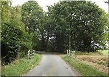 TM1587 : Rectory Road & Bridge by Adrian Cable
