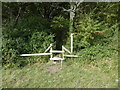 TQ2212 : Stile and plank bridge into South Furze Field by Shazz