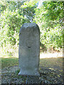 TL3800 : Meridian stone near Waltham Abbey by Stephen Craven