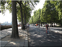 TQ3080 : Cycle superhighway, Victoria Embankment looking south by Stephen Craven