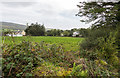 R7276 : Fields SSE of minor road Newtown by David P Howard