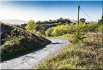 R7679 : Road between the spoil heaps by David P Howard