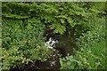 TQ3636 : River Medway by N Chadwick