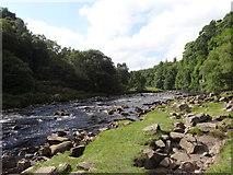 NY8828 : River Tees by Les Hull