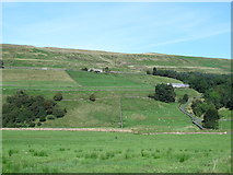 NY7346 : The valley of the River Nent just west of Blagill by Mike Quinn