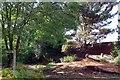 TQ1926 : Footpath & Bridleway Junction on Cooks Farm by Glyn Baker