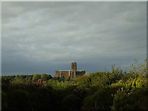 SU9849 : Guildford Cathedral by Carroll Pierce